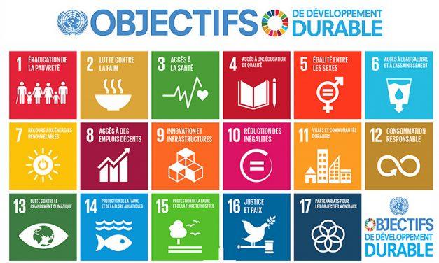Agenda 2030 : découvrez les outils pédagogiques et faisons des ODD une dimension de tous nos projets !