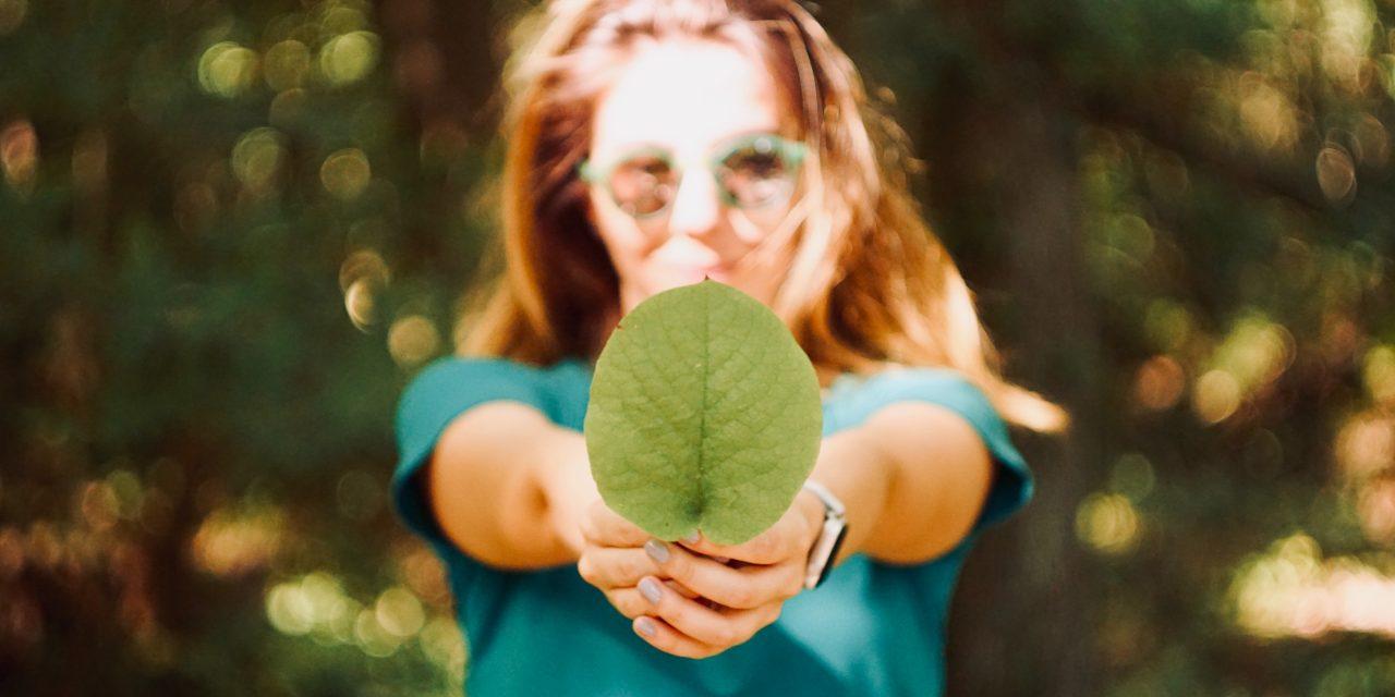 Concours «Tous éco-responsables, on parie?!»